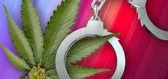 Prevenire è meglio che proibire: diciamo sì alla legalizzazione