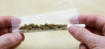Uno studio rivela – Se i drogati smettessero di drogarsi avrebbero più soldi per la droga